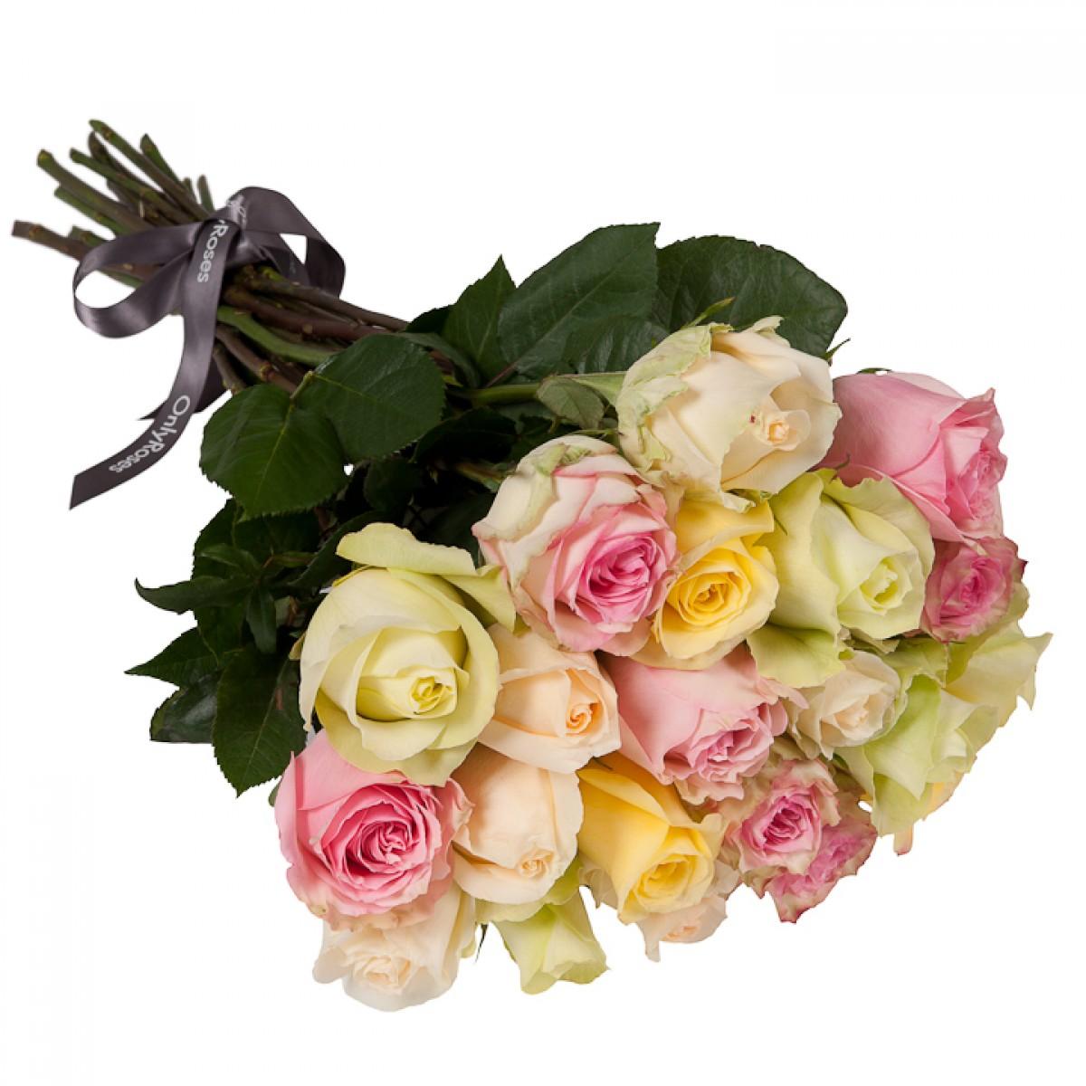 Букет от 15 до 25 рози в рози в пастелна гама (ти избираш броя)