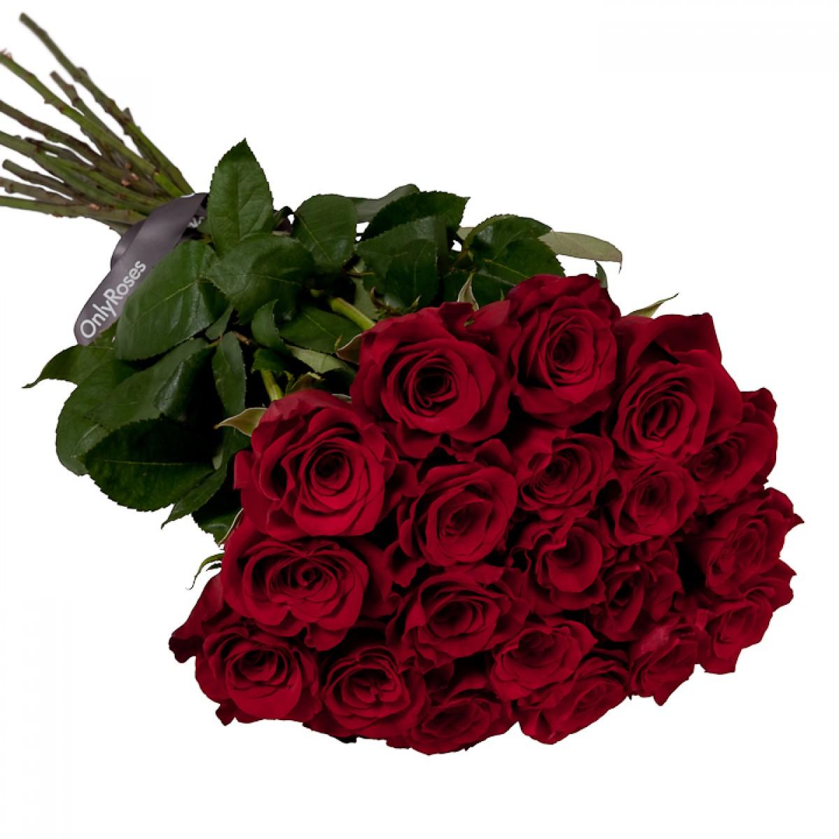 Букет от 15 до 25 червени рози  (ти избираш броя)