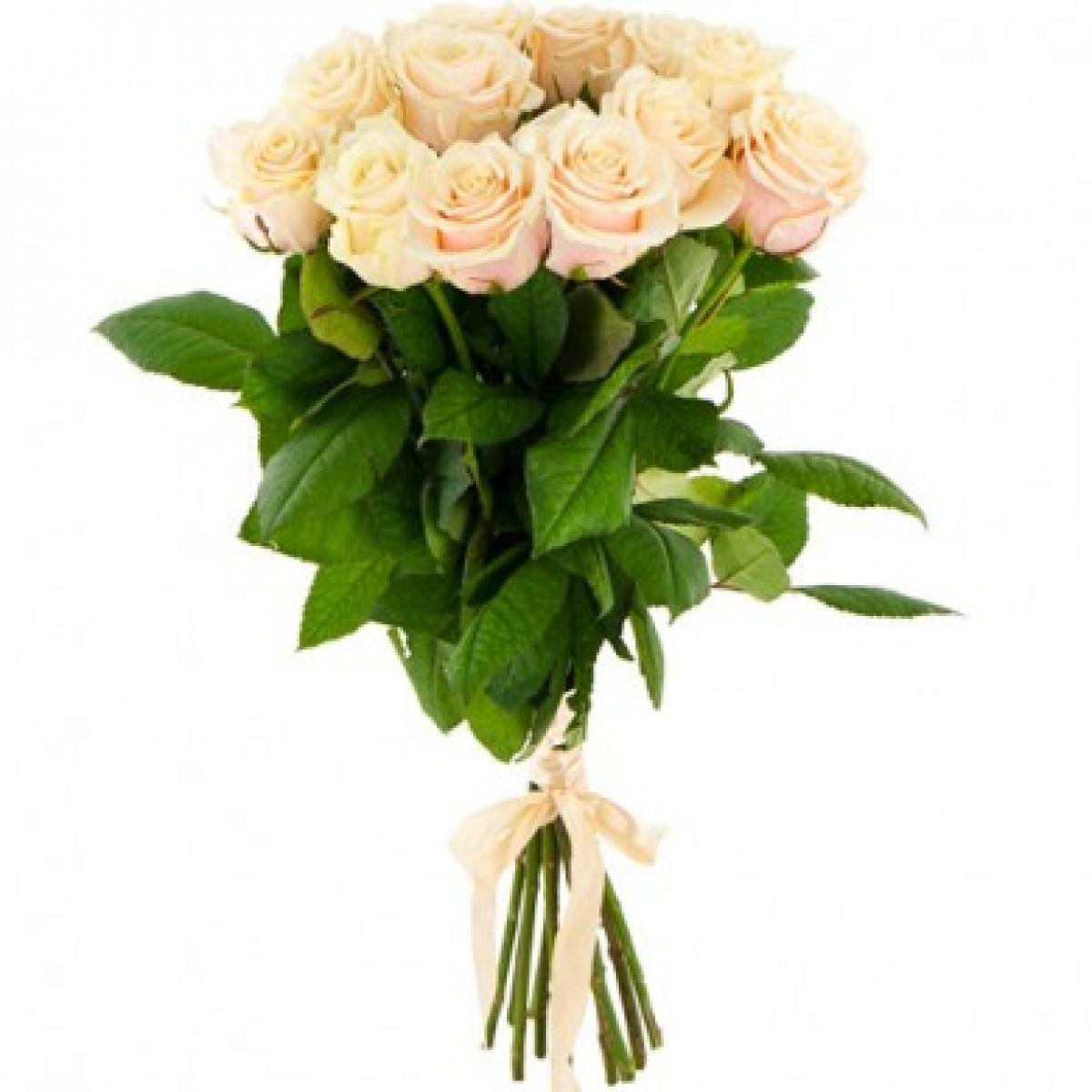 Букет от 11 до 15 кремави рози (ти избираш броя)