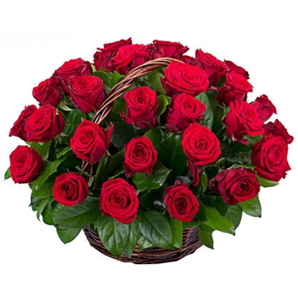 Кошница от 35 червени рози Grand Prix и зеленина